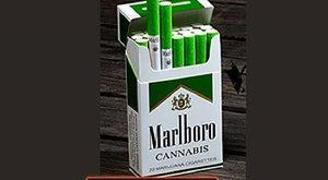 סיגריות מרלבורו קנביס