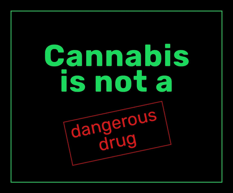 Image result for cannabis is not a drug
